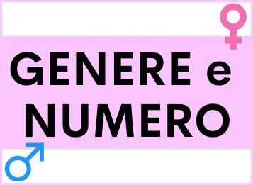 Genere e numero spagnolo