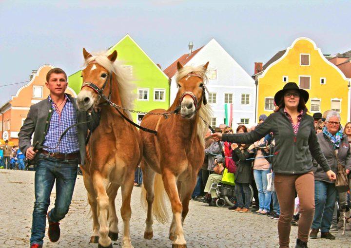Teilnehmer des Pferdemarktes 2016