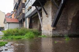 2017-09-28 Erfurt 7b (15 von 50)