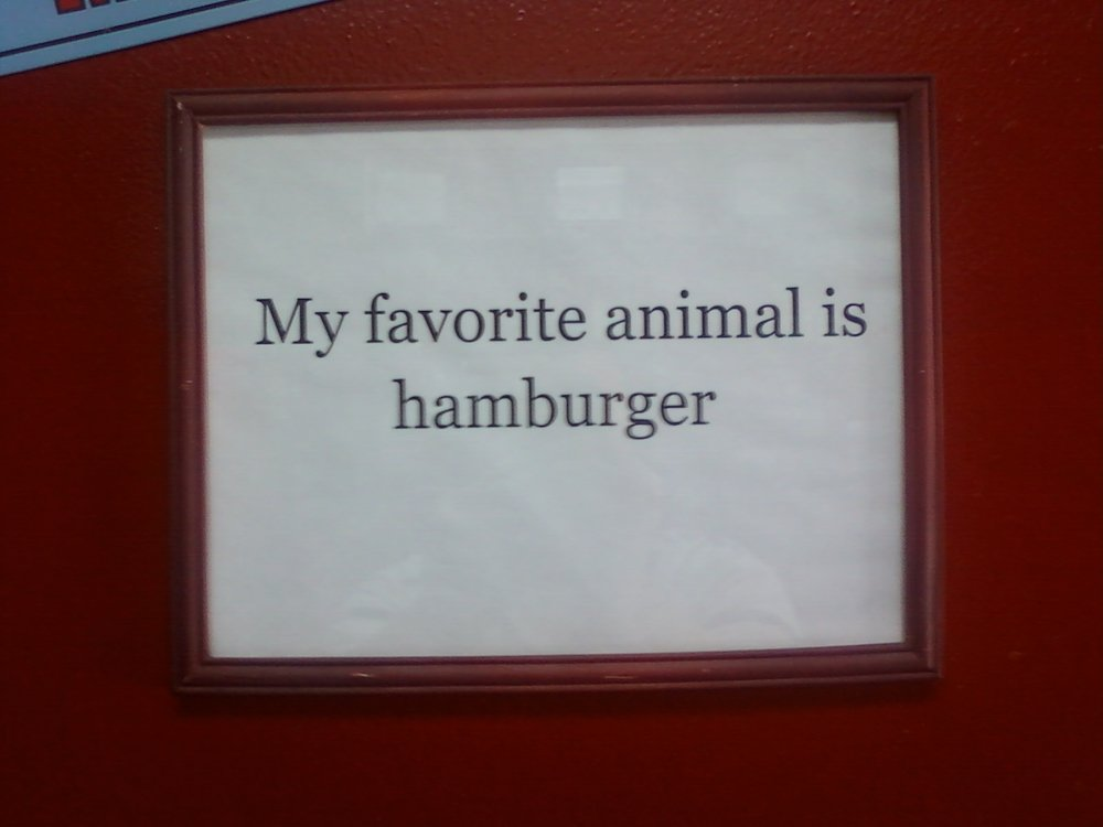 """My favorite animal is hamburger"""