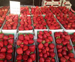 Early summer with the strawberries . . . they are soooo delicious right now