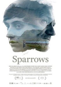 sparrows-564331435-large