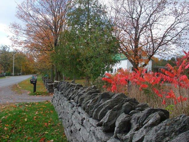 Morrison Point stone fence with fall colours