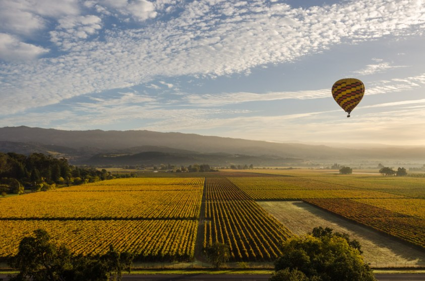 Flying over Napa Valley