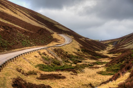 A road in Cairngorms National Park, Scotland