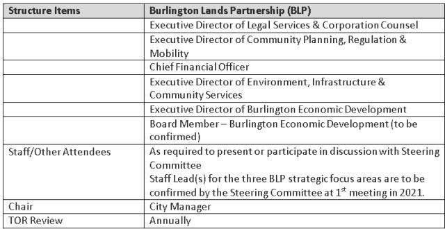 BLP steeriing terms 2