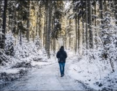 Winter walk Burlington