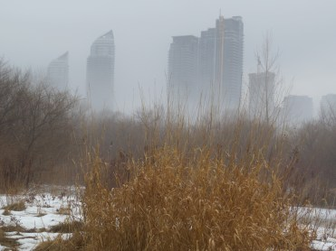Humber Bay Park East in Toronto, ON