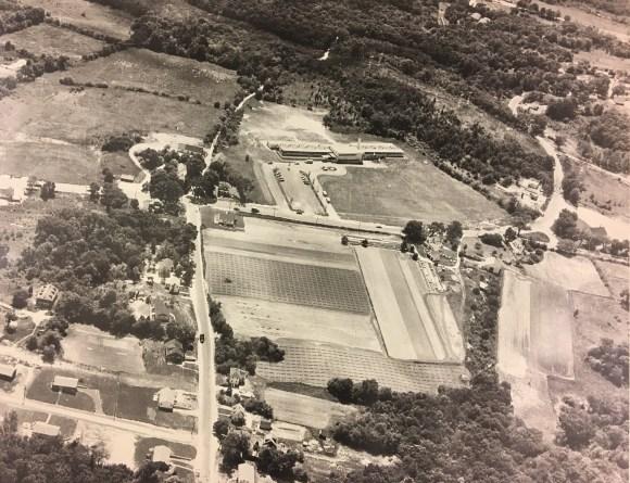 Memorial School 1954