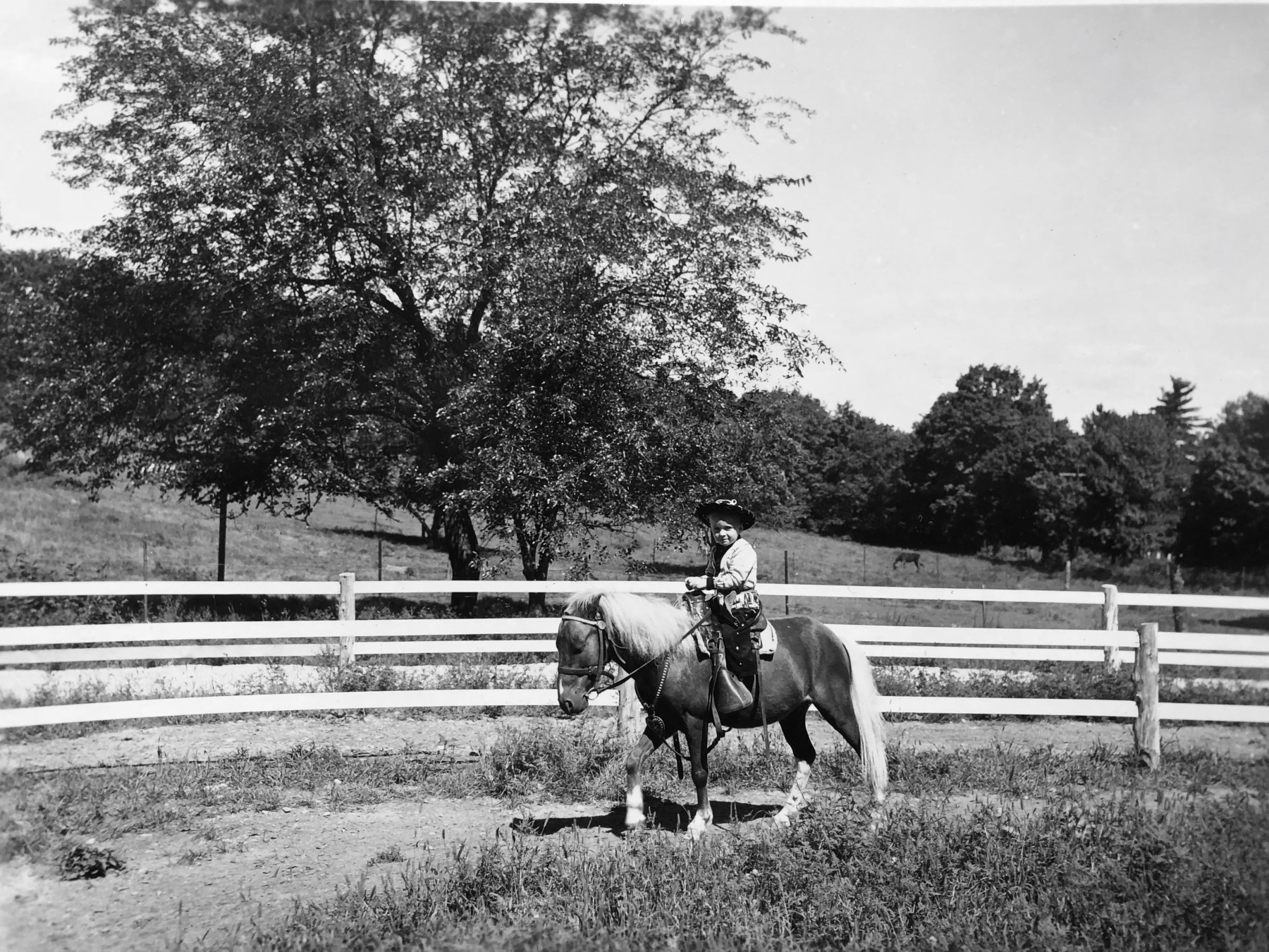 """Wayne on horse at """"Circle J Ranch,"""" Burlington MA. Photo credit: Wayne Higden"""