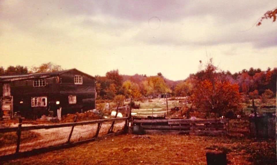 McCarthy Farm Burlington MA