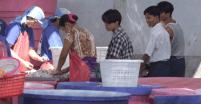 ထိုင်းနိုင်ငံ မဟာချိုင်ရှိ ပုစွန်အန်လုပ်ရုံမှ မြန်မာ ရွှေ့ပြောင်း အလုပ်သမားများ (ဓာတ်ပုံ - လွတ်လပ်သော မွန်သတင်းအေဂျင်စီ)