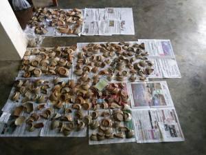 ကော့တာရွာ ဦးလှထွန်း၏ နေအိမ်ခြံဝင်းမှ စဉ့်ထည်ပစ္စည်းများ (ဦးစံဝင်း)