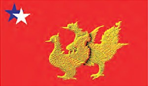 အမျိုးသမီးပါတီ (မွန်) အလံ(Copy)