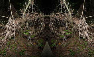 Photos: Reflections of the Sublime in Technology and Nature