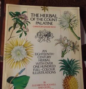 herbal2