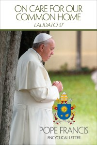 "This is the cover of the English edition of Pope Francis' encyclical on the environment, ""Laudato Si', on Care for Our Common Home."" The long-anticipated encyclical was released at the Vatican June 18. (CNS photo/courtesy U.S. Conference of Catholic Bishops) See stories slugged ENCYCLICAL- June 18, 2015."