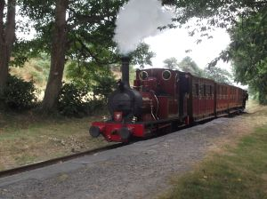 train on narrow gauge railway, Tallyllyn