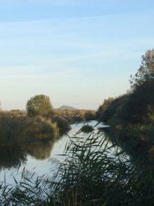 avalon marsh south drain Glastonbury Tor in distance