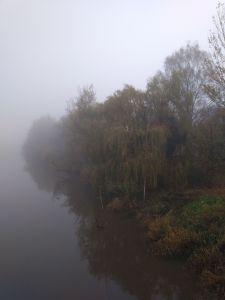 misty river bank