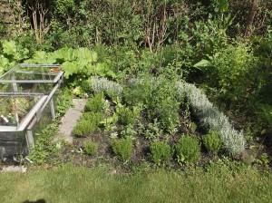 knot garden july