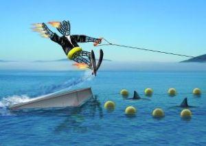 bm shark jumping
