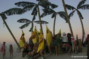 bananasboardtheisland_img_0221