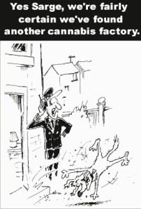 sniffer_dog_cartoon
