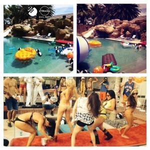 tin pool 2014