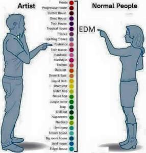 edm artist