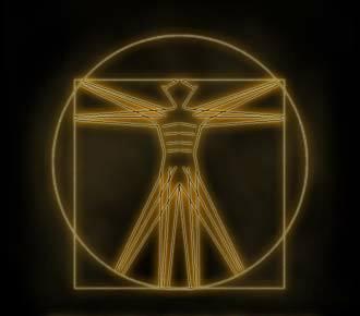 Da Vinci Man! Image: The Shifty Fox, Facebook