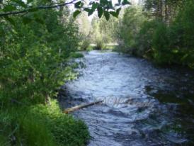Hat Creek 4