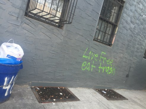 """Live free, eat trash"" tag proves freeganism is a movement in Bushwick"