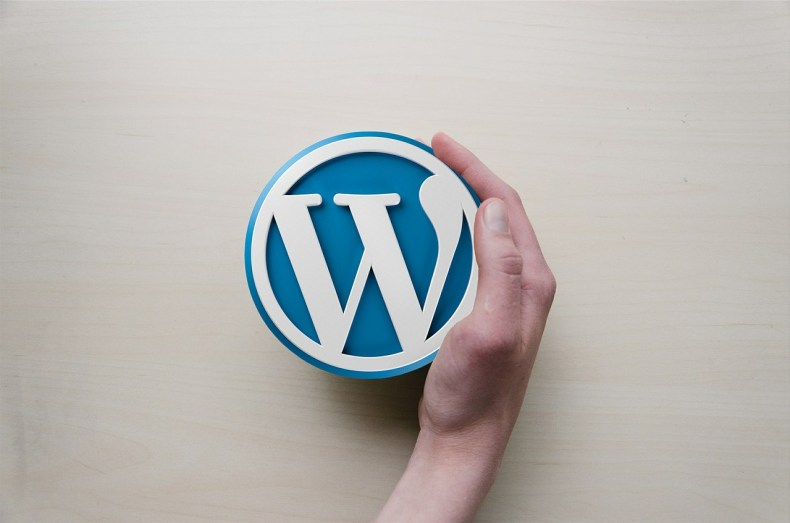 build a website on your own with WordPress