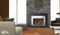 Replacing A Gas Fireplace With Electric - Home Interior ...