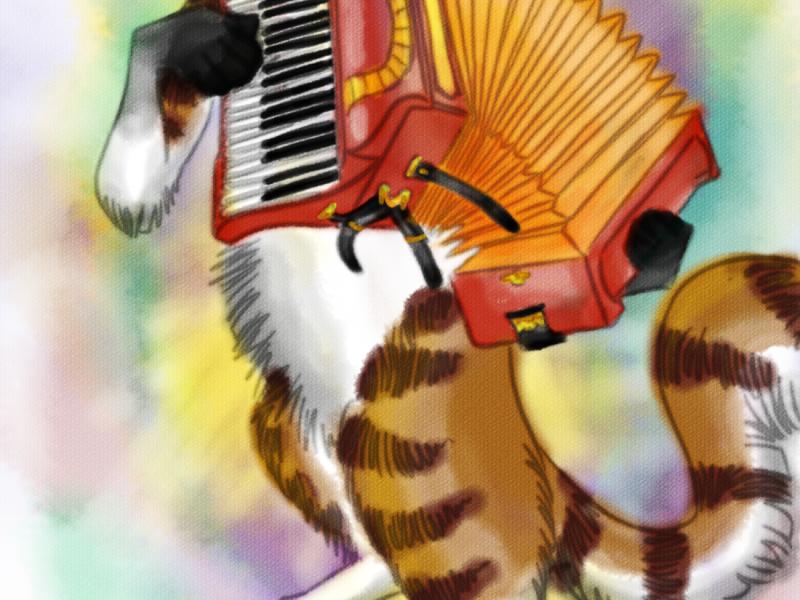 Accordion Cat