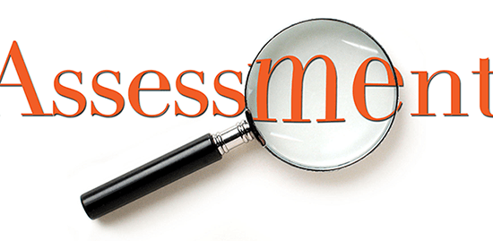 Importance of Assessments