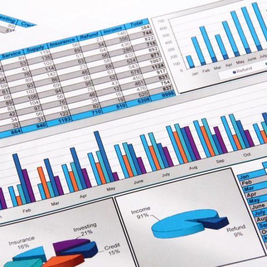 Understanding Your Reports