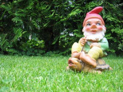 Gnome in lawn.