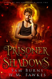Book Cover: Prisoner of Shadows