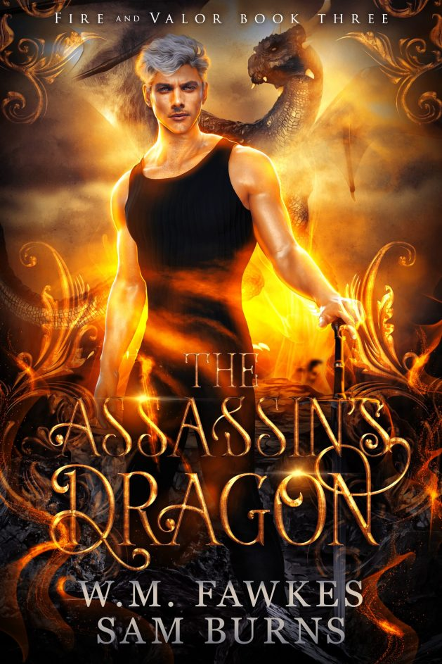 Book Cover: The Assassin's Dragon