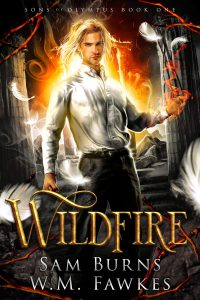 Book Cover: Wildfire
