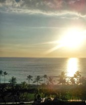 A Hawaiian Vacation