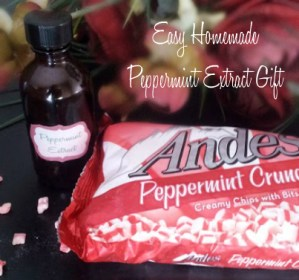 Homemade Peppermint Extract Gift
