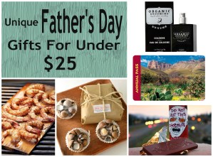 Father's Day Gifts Under $25 {2014}