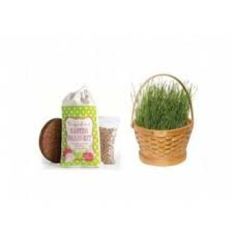 easter grass kit