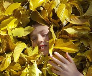 childrens acid reflux