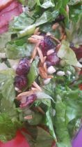 Apple Cranberry Salad with Apple Dijon Dressing