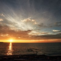 Drain Sunrise VI