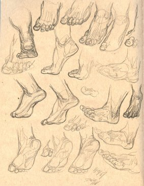 Anatomy_Sketch03